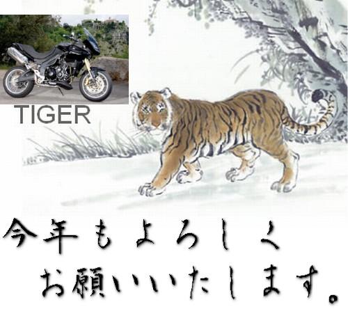 虎とTIGER